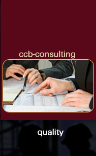 CCB Consulting